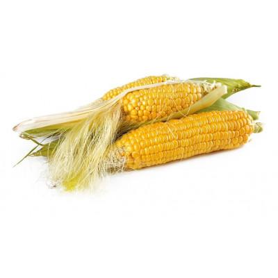 Семена кукурузы | AliSun.shop